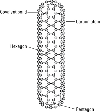 A carbon nanotube with closed ends.