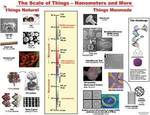 difference between nanoscience and nanotechnology in tabular form